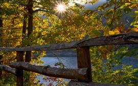 Vorschau des Hintergrundbilder Italien, Bäume, Zaun, Herbst, Seesiiglia