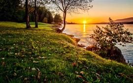 壁紙のプレビュー 自然、草、木、湖、日没
