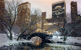 Preview wallpaper New York, park, snow, bridge, trees, winter, USA