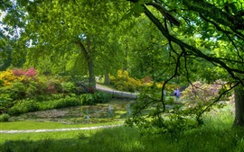 Preview wallpaper Park, green trees, grass, flowers, pond, beautiful scenery