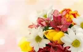 Vorschau des Hintergrundbilder Einige Blumen, roter, gelber, weißer, dunstiger Hintergrund
