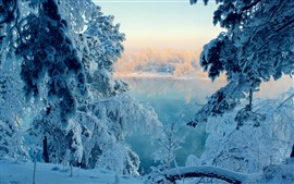 Preview wallpaper Thick snow, trees, lake, winter