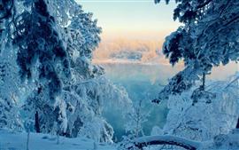 Nieve gruesa, árboles, lago, invierno