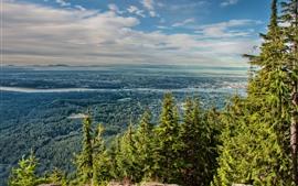 预览壁纸 树木,山脉,北温哥华,河,加拿大