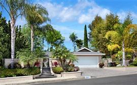 Preview wallpaper Tropical, trees, villa, road