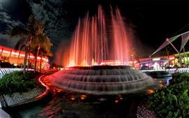 USA, fountain, water, night, city