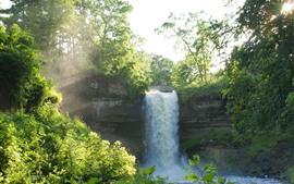 Cachoeira, árvores, verão, sol