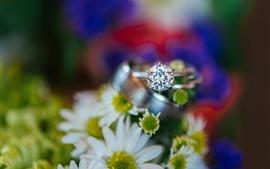 Aperçu fond d'écran Fleurs blanches, bague, diamant, brumeux