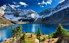 预览壁纸 幽鹤国家公园,湖泊,山脉,树木,云,雪,加拿大