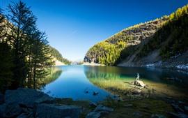 Parque Nacional Banff, Lago Louise, Montanhas, Árvores, Homem, Canadá