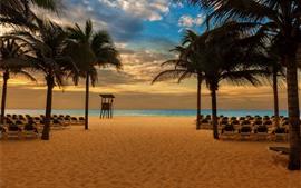 Пляж, пальмы, стулья, море, сумерки