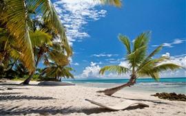 Пляж, пальмы, солнечные лучи, море, голубое небо, тропический