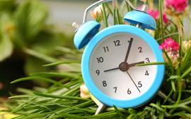 Синий будильник, розовые цветы