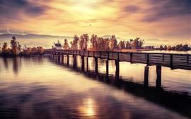 Pont, rivière, arbres, coucher de soleil