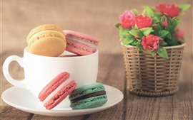 Cup, macaron, colorful, red flowers