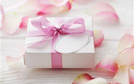 Presente, fita, pétalas de rosa rosa, romântico