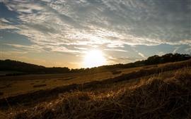 Aperçu fond d'écran Foin, champ, coucher de soleil, ciel, nuages