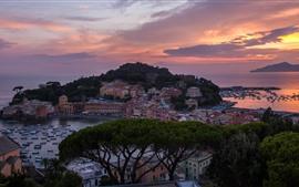 Itália, costa, mar, capa, casas, barcos, árvores, pôr do sol