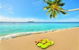 Пальма, пляж, море, волны, морская звезда, флип флоп, голубое небо