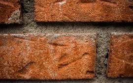 Pared, ladrillos macro fotografía, textura