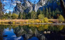 Yosemite национальный парк, озеро, отражение воды, горы, деревья