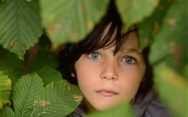 Criança, rosto, olhos, folhas