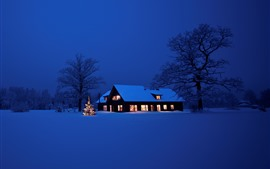 Preview wallpaper Christmas, thick snow, house, lights, night, trees, winter