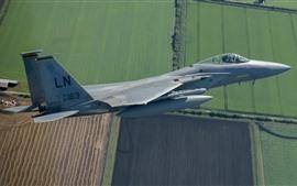 Aperçu fond d'écran F-15C Fauteur d'aigle, vol, ciel, champs