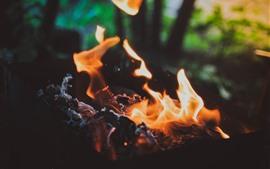 Огонь, пламя, уголь