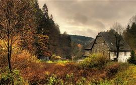Германия, Деревья, Дома, Деревня, Осень