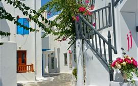 Греция, цветы, лестница, дом, солнечный свет