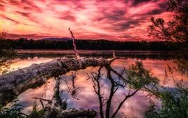 预览壁纸 湖,树,山,红色的天空,云,日落