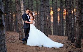 Vorschau des Hintergrundbilder Liebhaber, Mädchen, Junge, Bäume, Paar