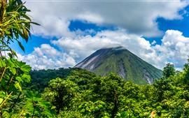 Aperçu fond d'écran Montagne, arbres, vert, nuages, ciel