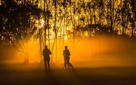 Pessoas correndo, árvores, cão, nevoeiro, raios de sol, manhã