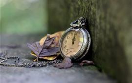 Vorschau des Hintergrundbilder Taschenuhr, Blätter, Ecke
