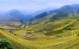 Preview wallpaper Rice terrace, fields, mountains, countryside, beautiful scenery