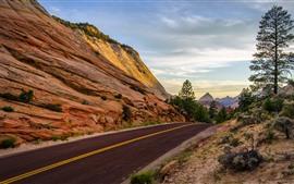 Carretera, rocas, árboles, valle