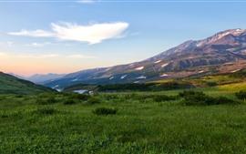 Россия, Камчатка, горы, трава, снег