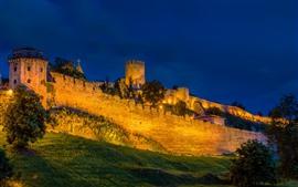 Sérvia, Belgrado, Fortaleza, Noite, Árvores, Luzes