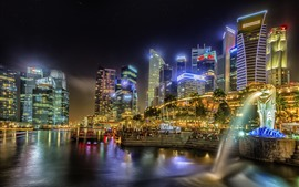 Preview wallpaper Singapore, city, night, lights, skyscrapers, fountain, lake