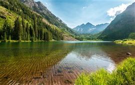 Деревья, озеро, чистая вода, горы, штат Колорадо, США
