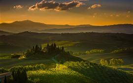 Vorschau des Hintergrundbilder Toskana, Italien, Dorf, Landschaft, Felder, Bäume, Grün