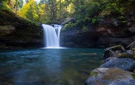 Cachoeira, Oregon, árvores, pedras, outono, EUA