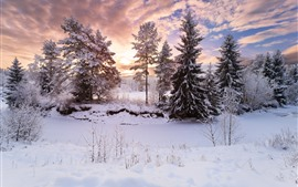Preview wallpaper Beautiful winter, trees, snow, sunset, sky, clouds