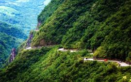 Brasil, montanha, estrada