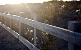 Vorschau des Hintergrundbilder Zaun, Blumen, Sonnenstrahlen, dunstig