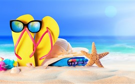 Flip flop, sunglass, estrela do mar, chapéu, praia, mar