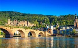 Германия, Гейдельберг, река, мост, город, дома