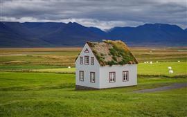 Aperçu fond d'écran Islande, maison, montagnes, herbe, champs